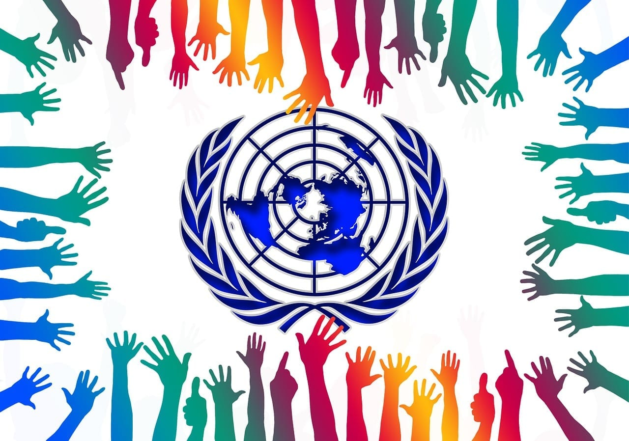 Growing Role of NGOs and the UN