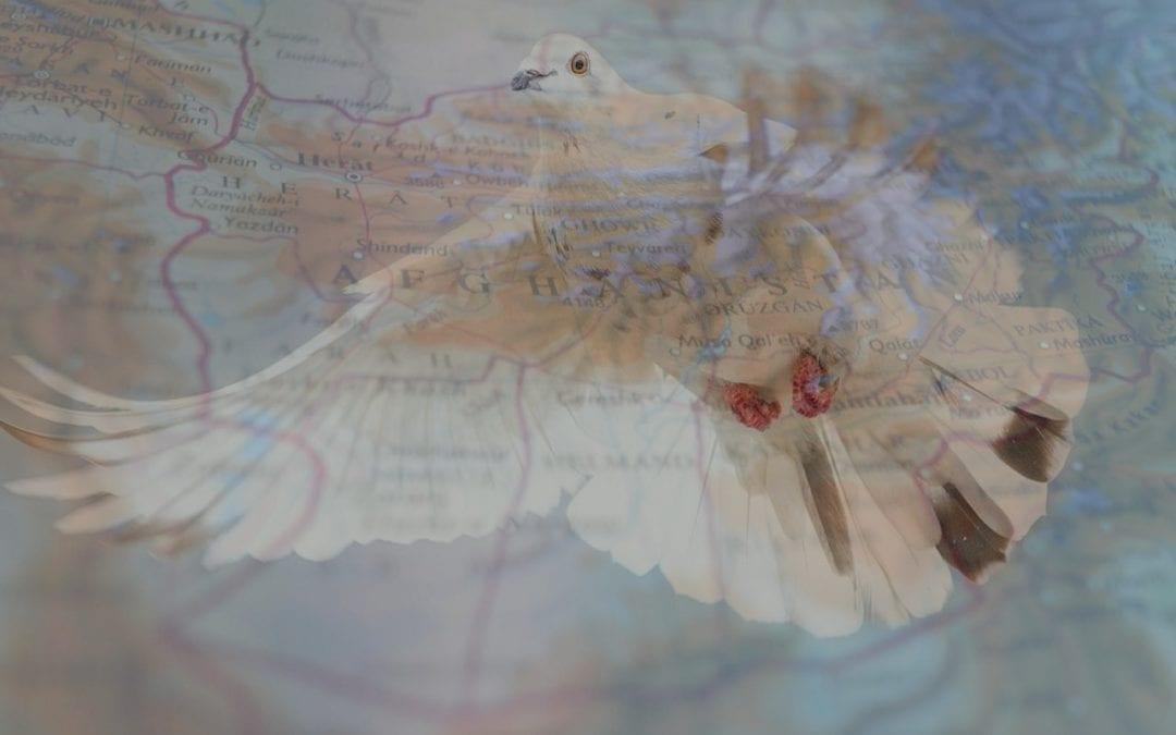 Afghan Peace Process Beyond the Horizon ISSG